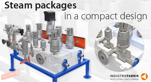 Compact system steam packages for tire curing presses 03a